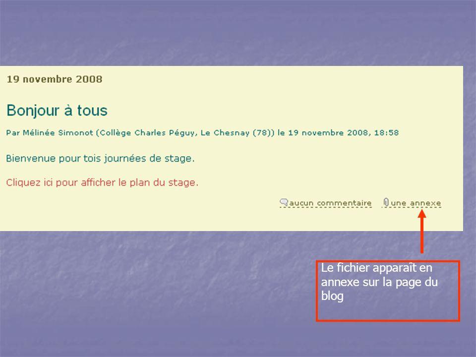 Le fichier apparaît en annexe sur la page du blog