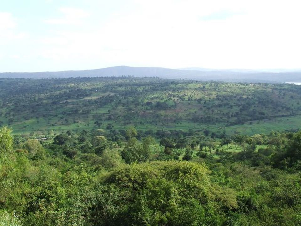 Action concrète: Faire une convention renouvelable et tournante avec un hôpital du Burundi.