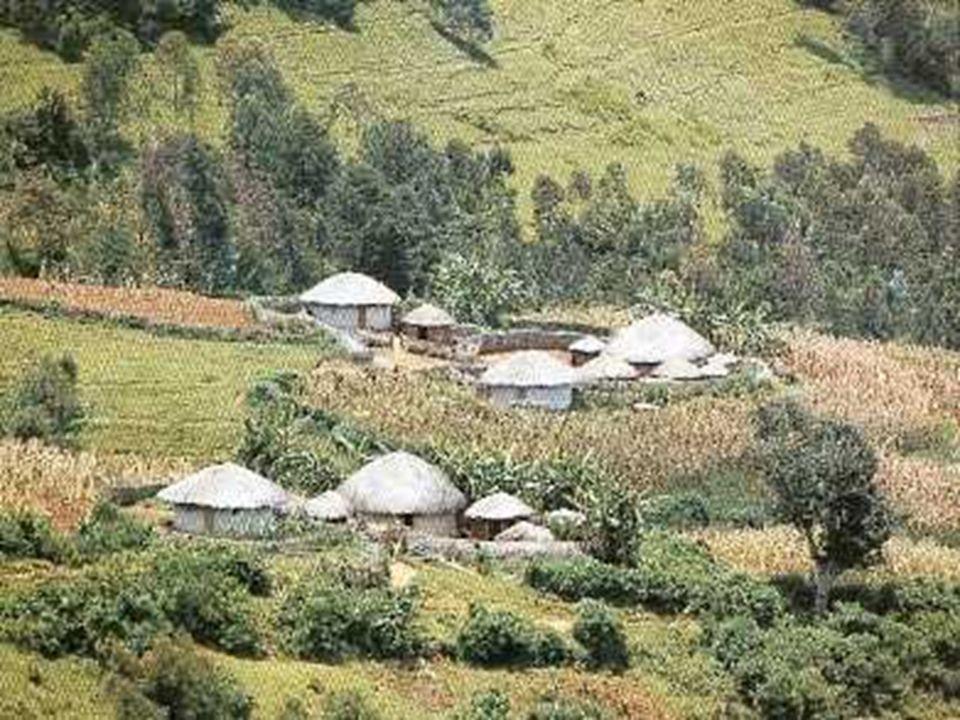 Missions de soins et de formation Les missions seraient organisées par l association SFB, qui assurera une sorte de tournante pour les spécialités les plus démunies au Burundi.