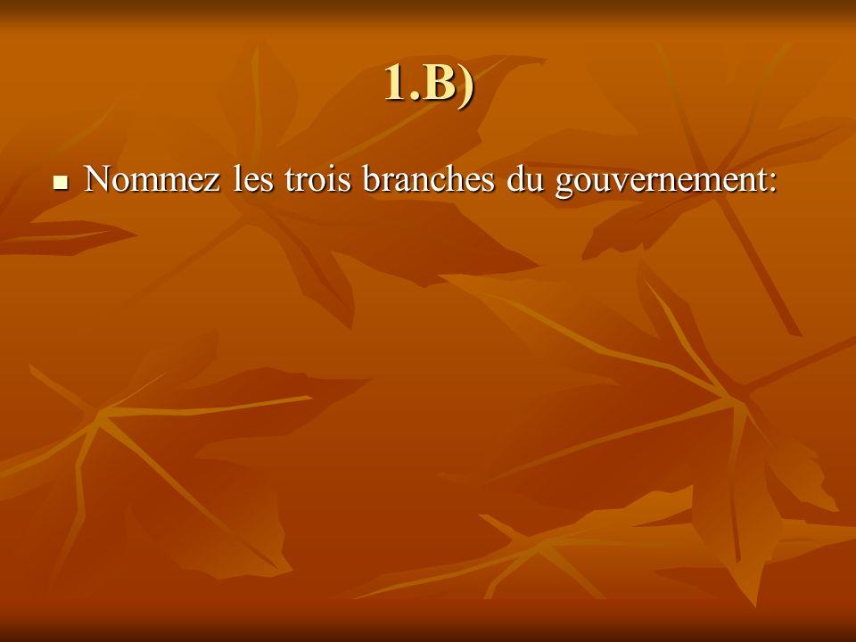 Branche législative Branche législative Branche exécutive Branche exécutive Branche judiciaire Branche judiciaire