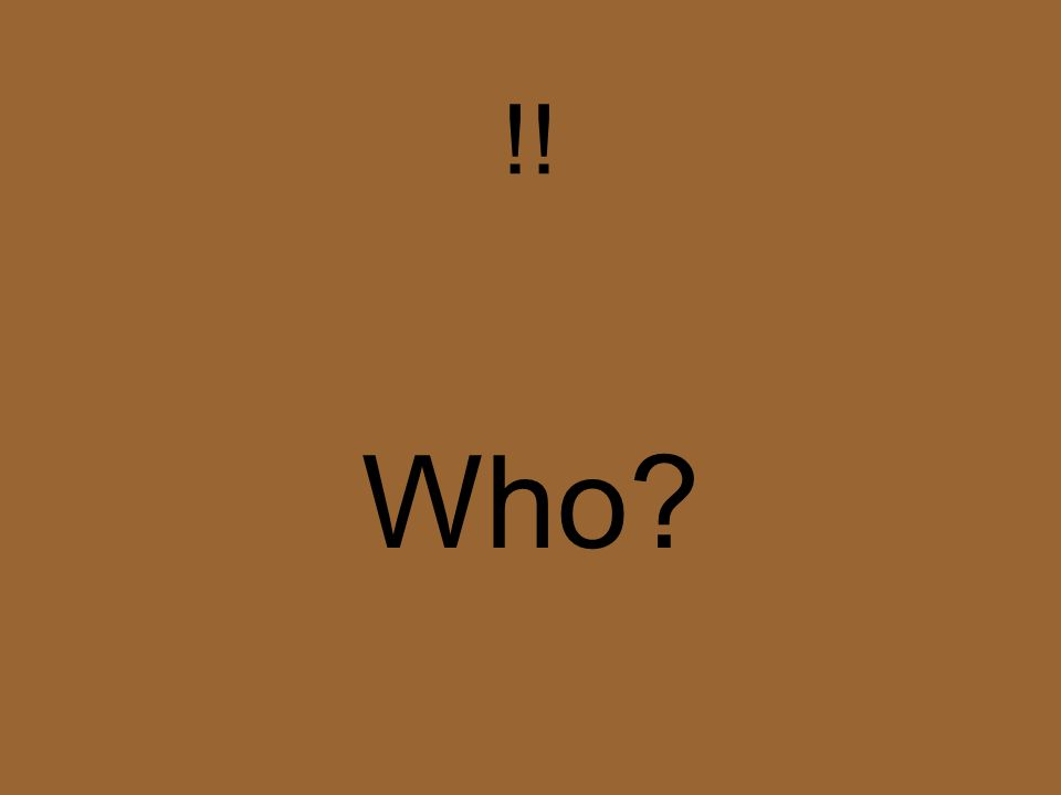 ?? Qui?