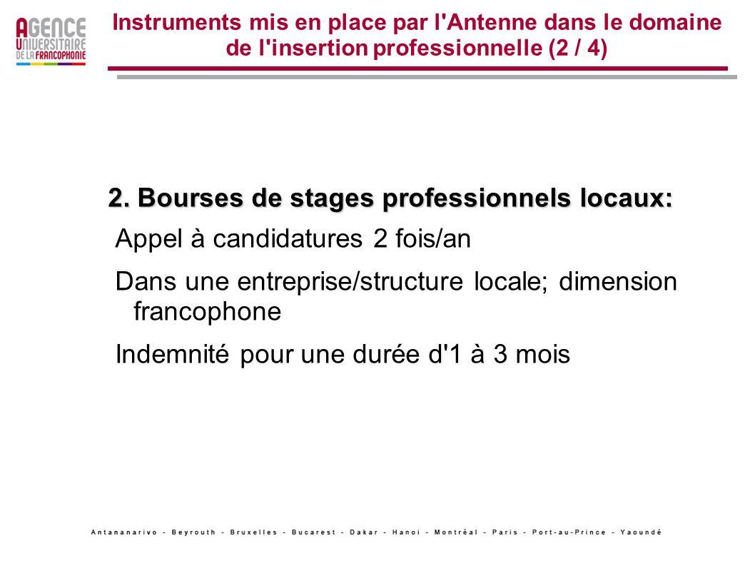 Instruments mis en place par l'Antenne dans le domaine de l'insertion professionnelle (2 / 4) 2. Bourses de stages professionnels locaux: Appel à cand