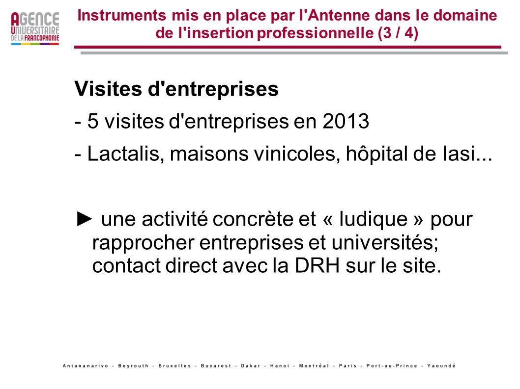 Instruments mis en place par l'Antenne dans le domaine de l'insertion professionnelle (3 / 4) Visites d'entreprises - 5 visites d'entreprises en 2013