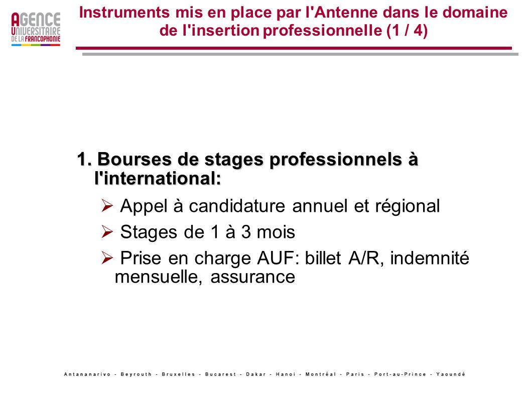 Instruments mis en place par l'Antenne dans le domaine de l'insertion professionnelle (1 / 4) 1. Bourses de stages professionnels à l'international: A