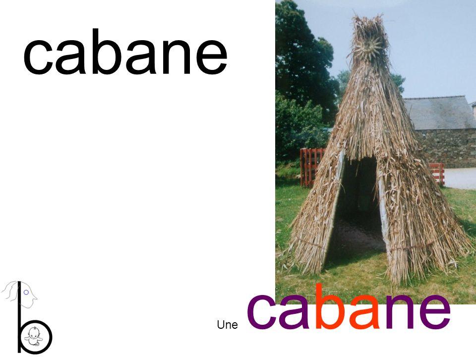 cabane Une cabane