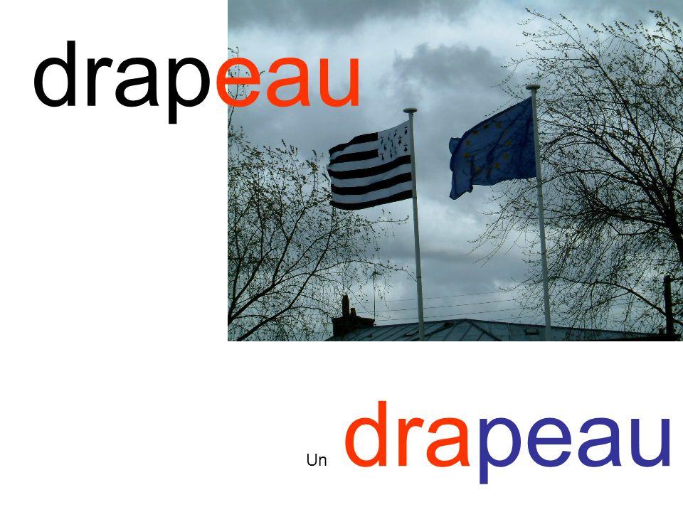 drapeau Un drapeau