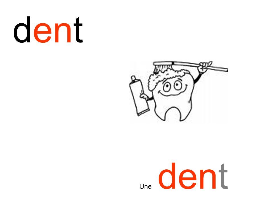dent Une dent