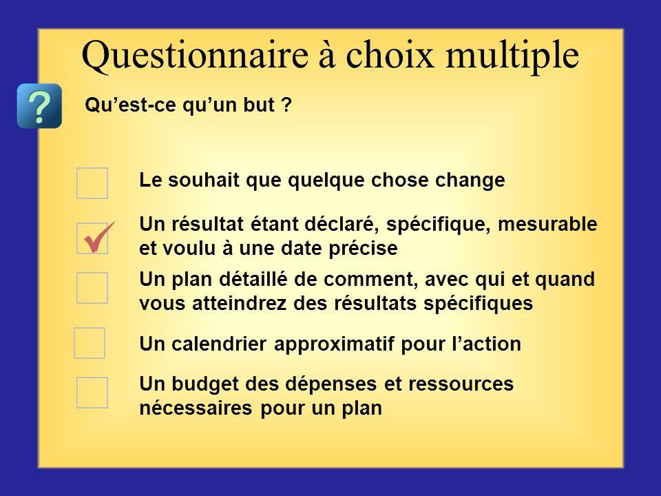 Questionnaire sur létablissement des buts – plan daction Commencer par la première question ou choix se trouvant sur la gauche, puis cliquer sur la ré