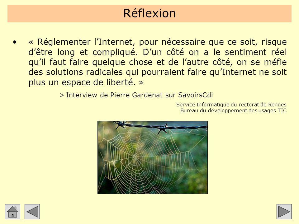Réflexion « Réglementer lInternet, pour nécessaire que ce soit, risque dêtre long et compliqué. Dun côté on a le sentiment réel quil faut faire quelqu