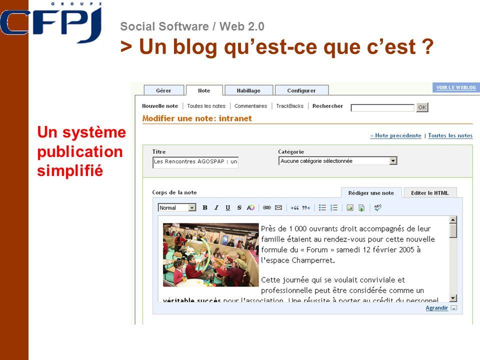 > Un blog quest-ce que cest ? Un système de publication simplifié Social Software / Web 2.0