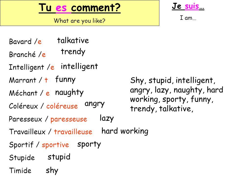 Tu es comment? What are you like? Tu es comment? What are you like? Je suis… I am… Bavard /e Branché /e Intelligent /e Marrant / t Méchant / e Coléreu