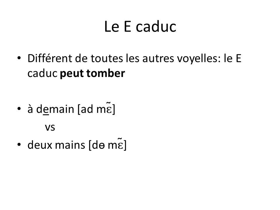Le E caduc Différent de toutes les autres voyelles: le E caduc peut tomber à demain [ad mɛ̃] vs deux mains [dɵ mɛ̃]