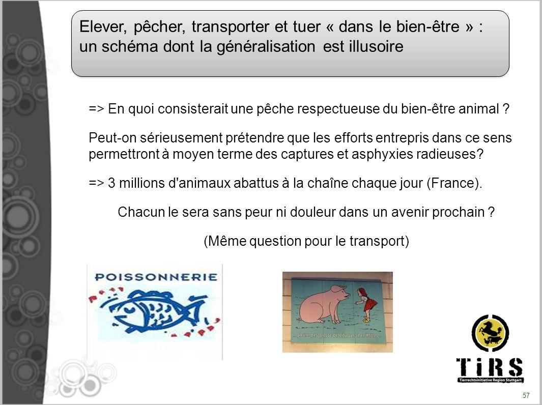 => En quoi consisterait une pêche respectueuse du bien-être animal ? Peut-on sérieusement prétendre que les efforts entrepris dans ce sens permettront