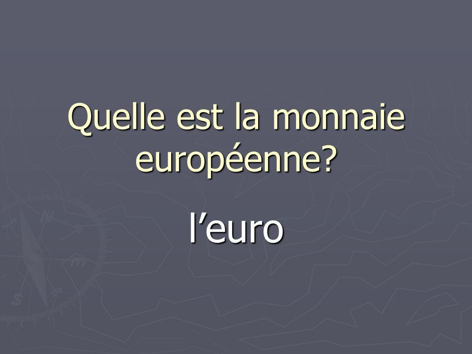 Quelle est la monnaie européenne? leuro