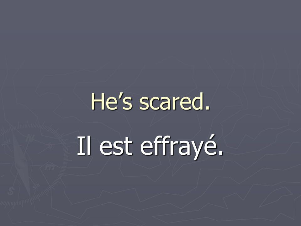 Hes scared. Il est effrayé.