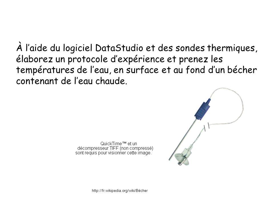 À laide du logiciel DataStudio et des sondes thermiques, élaborez un protocole dexpérience et prenez les températures de leau, en surface et au fond dun bécher contenant de leau chaude.