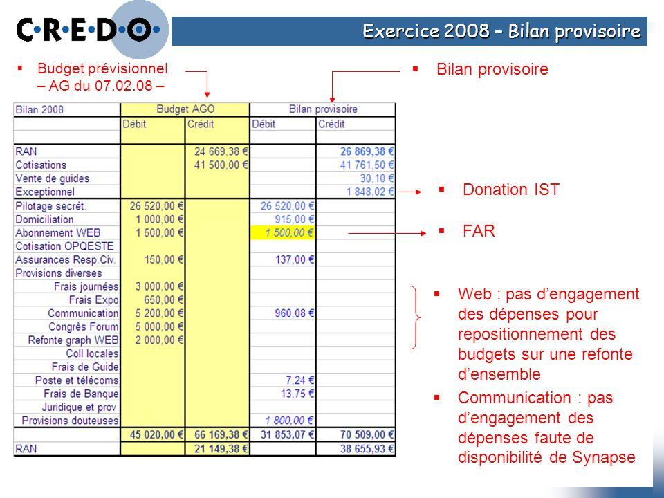 Exercice 2008 – Bilan provisoire Budget prévisionnel – AG du 07.02.08 – Bilan provisoire Web : pas dengagement des dépenses pour repositionnement des