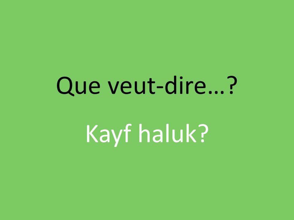 Que veut-dire…? Kayf haluk?