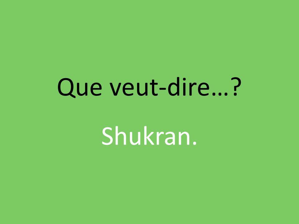 Que veut-dire…? Shukran.