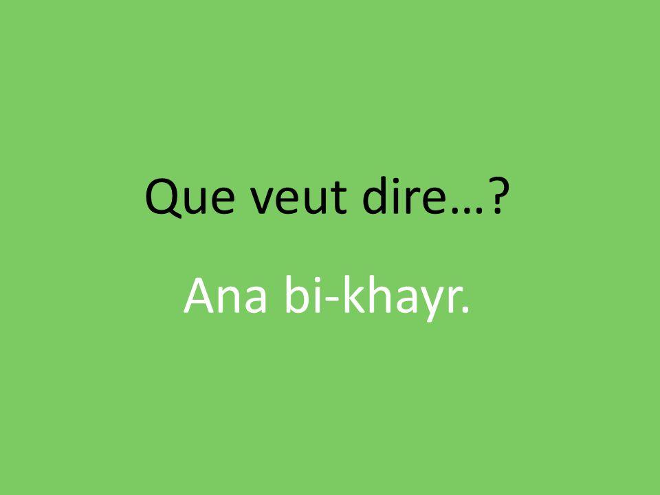 Que veut dire…? Ana bi-khayr.