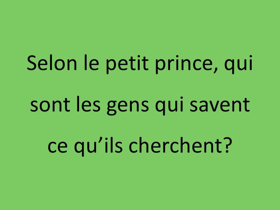 Selon le petit prince, qui sont les gens qui savent ce quils cherchent?