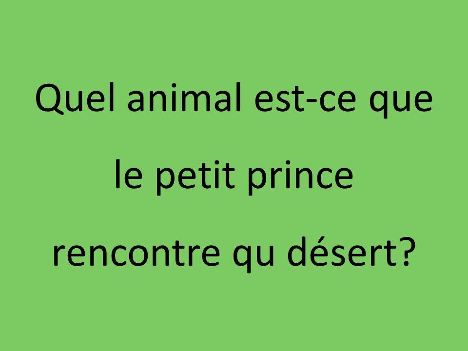 Quel animal est-ce que le petit prince rencontre qu désert?