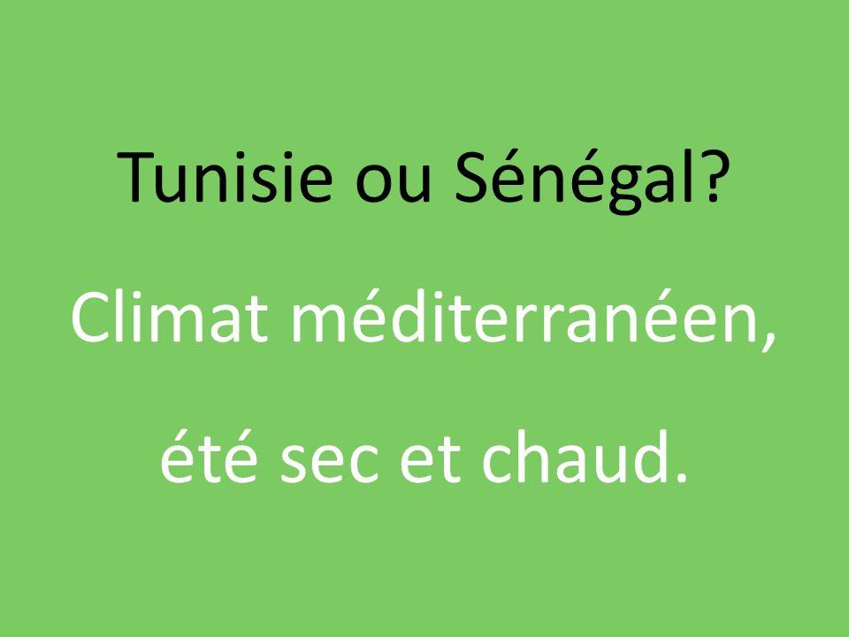 Tunisie ou Sénégal? Climat méditerranéen, été sec et chaud.