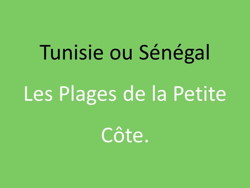 Tunisie ou Sénégal Les Plages de la Petite Côte.