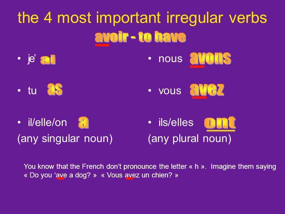 je tu il/elle/on (any singular noun) nous vous ils/elles (any plural noun) WHY is the Y outside the shoe.