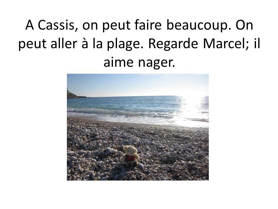 A Cassis, on peut faire beaucoup. On peut aller à la plage. Regarde Marcel; il aime nager.