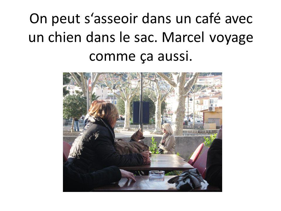 On peut sasseoir dans un café avec un chien dans le sac. Marcel voyage comme ça aussi.
