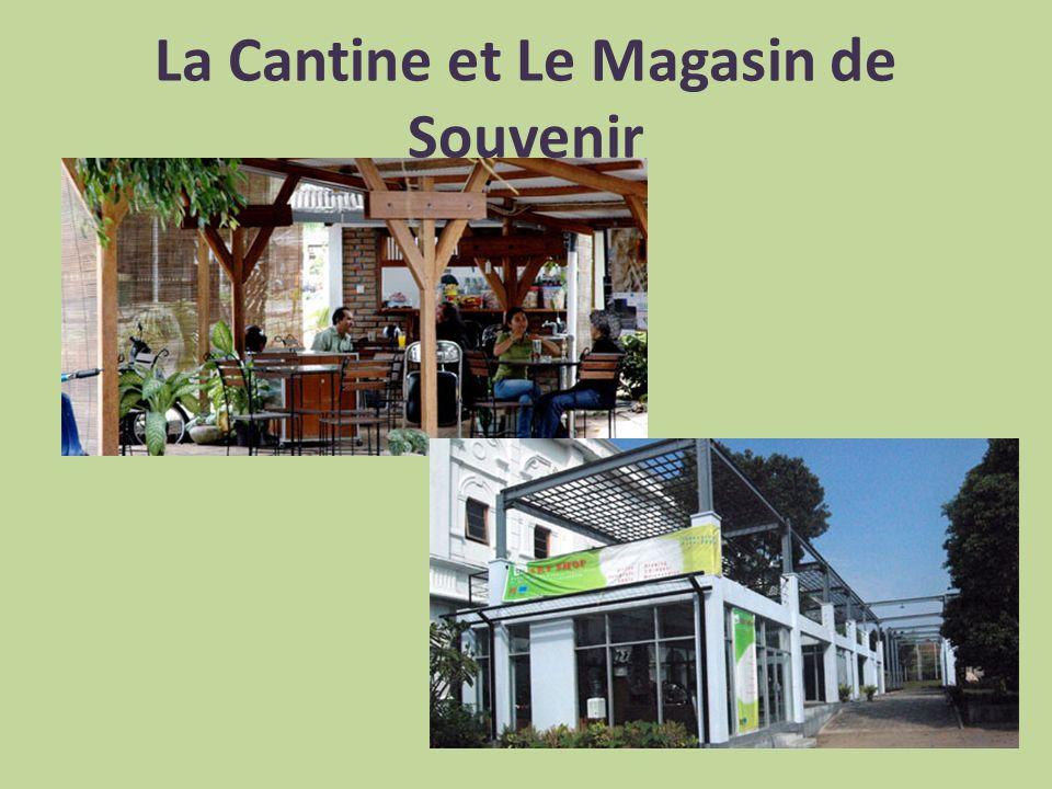 La Cantine et Le Magasin de Souvenir