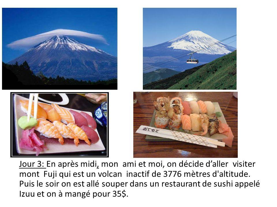 Jour 3: En après midi, mon ami et moi, on décide daller visiter mont Fuji qui est un volcan inactif de 3776 mètres d'altitude. Puis le soir on est all