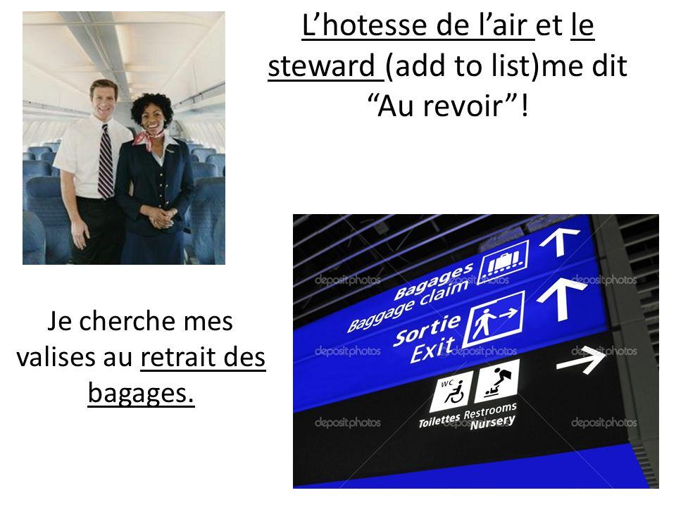 Lhotesse de lair et le steward (add to list)me dit Au revoir! Je cherche mes valises au retrait des bagages.