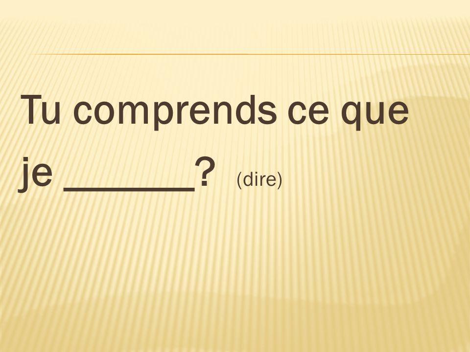 Tu comprends ce que je ______? (dire)