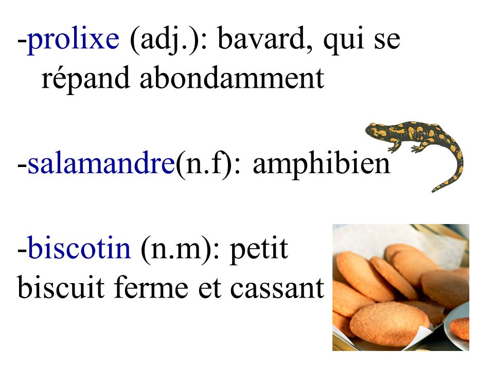 -prolixe (adj.): bavard, qui se répand abondamment -salamandre(n.f): amphibien -biscotin (n.m): petit biscuit ferme et cassant