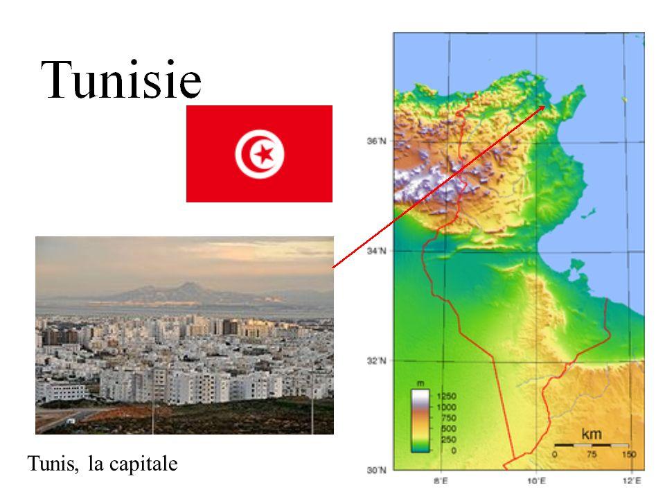 Tunis, la capitale