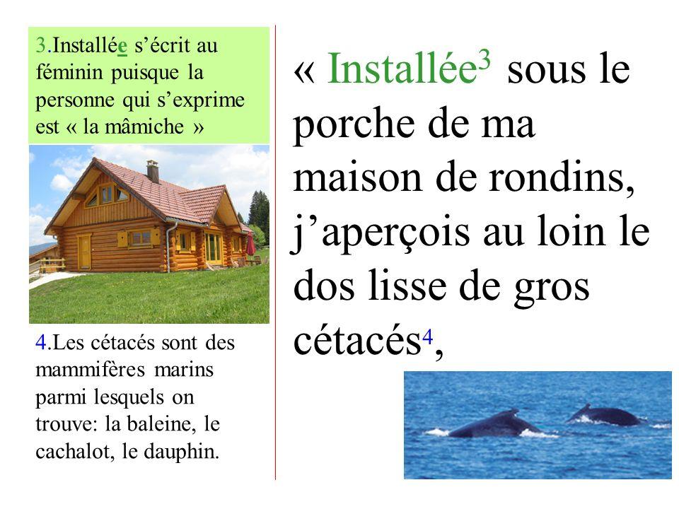 « Installée 3 sous le porche de ma maison de rondins, japerçois au loin le dos lisse de gros cétacés 4, 4.Les cétacés sont des mammifères marins parmi