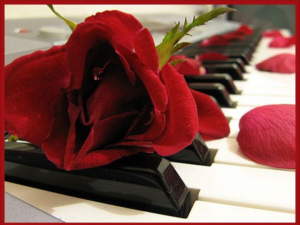 Lorsquil mourut, étrange chose On vit se poser un oiseau Qui tenait dans son bec, une rose.