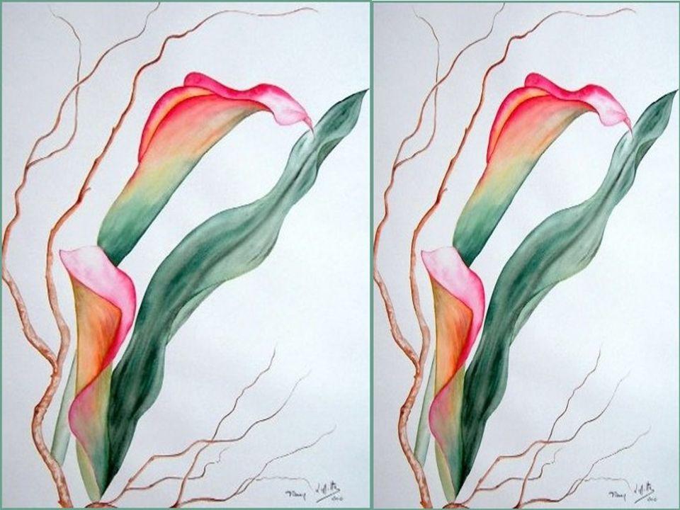 Poème: Lili Renaud Bédard «Le musicien » Montage: Annette Rhéaume Copyright ©Tous droits réservés chezannetter@hotmail.ca chezannetter@hotmail.ca http://aquarelles-fannylaffitte.com / Ces 8 aquarelles sont lœuvre de lartiste peintre:
