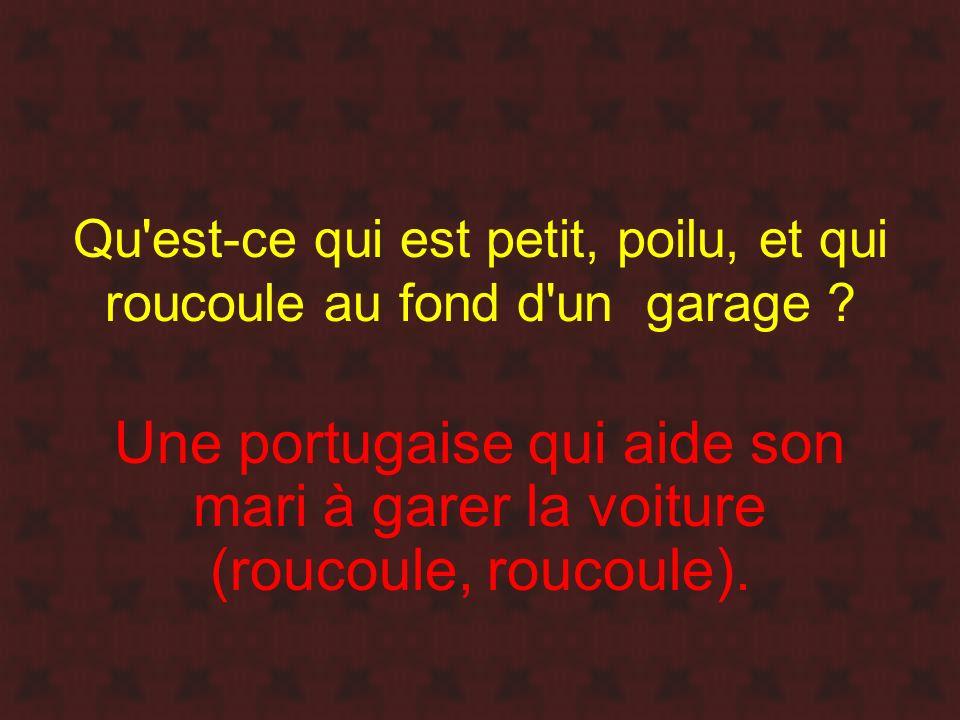 Qu'est-ce qui est petit, poilu, et qui roucoule au fond d'un garage ? Une portugaise qui aide son mari à garer la voiture (roucoule, roucoule).