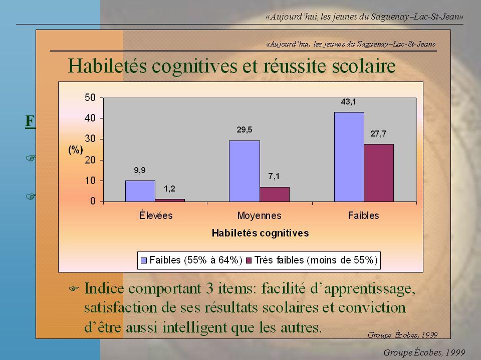 Groupe Écobes, 1999 «Aujourdhui, les jeunes du Saguenay Lac-St-Jean» Facteur Rapport des cotes F Faibles habiletés cognitives558 F Aspirations scolair