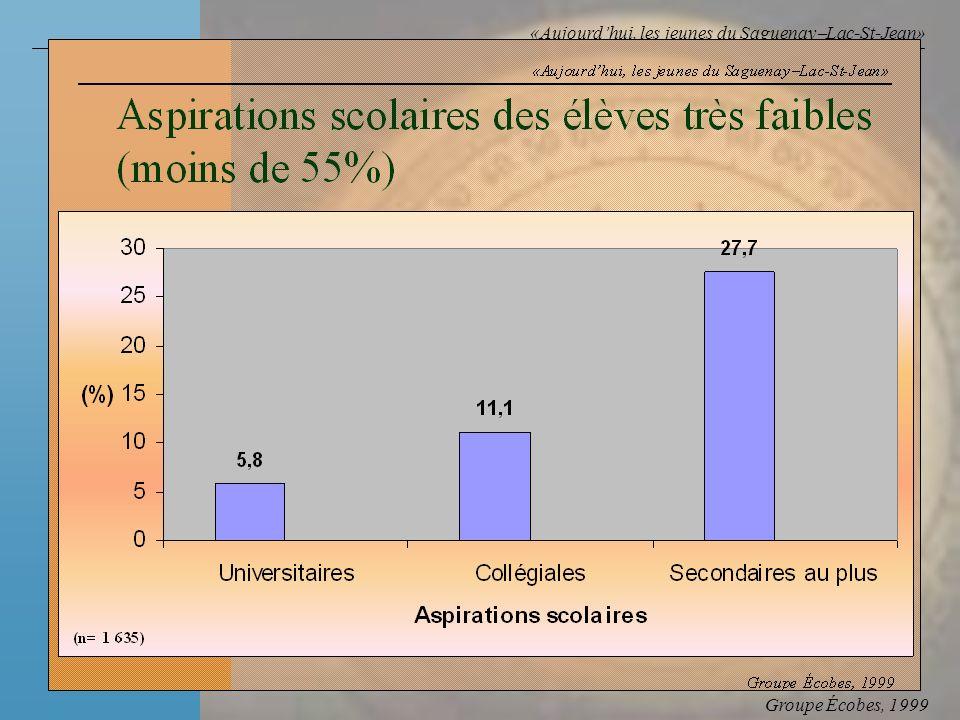 Groupe Écobes, 1999 «Aujourdhui, les jeunes du Saguenay Lac-St-Jean» Facteur Rapport des cotes F Faibles habiletés cognitives558 F Naspirant pas conti