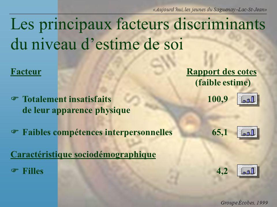 Groupe Écobes, 1999 «Aujourdhui, les jeunes du Saguenay Lac-St-Jean» FacteurRapport des cotes (faible estime) Totalement insatisfaits 100,9 de leur ap