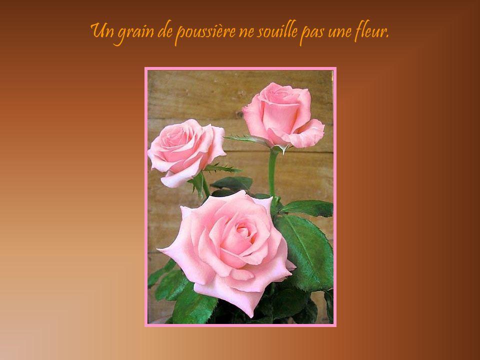 La peinture est à fleur de toile, la vie est à fleur de peau.