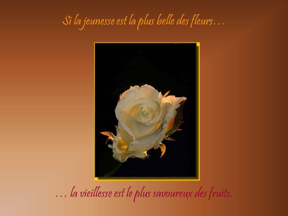 Si lamour est doux comme une fleur, alors grand-mère est cette fleur.