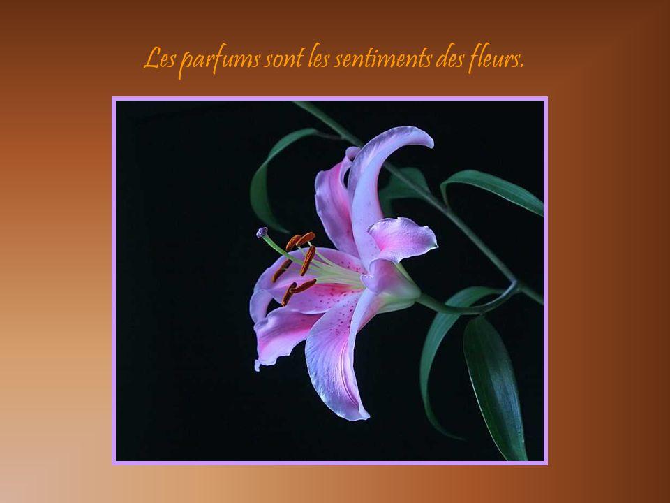 Les parfums sont les sentiments des fleurs.