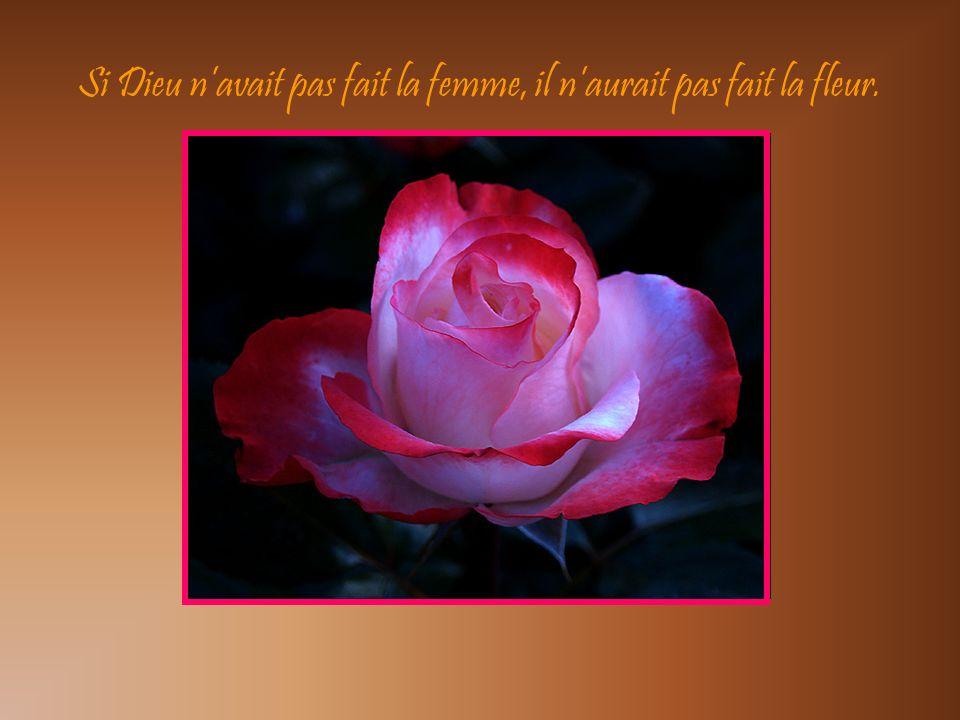 Si Dieu navait pas fait la femme, il naurait pas fait la fleur.