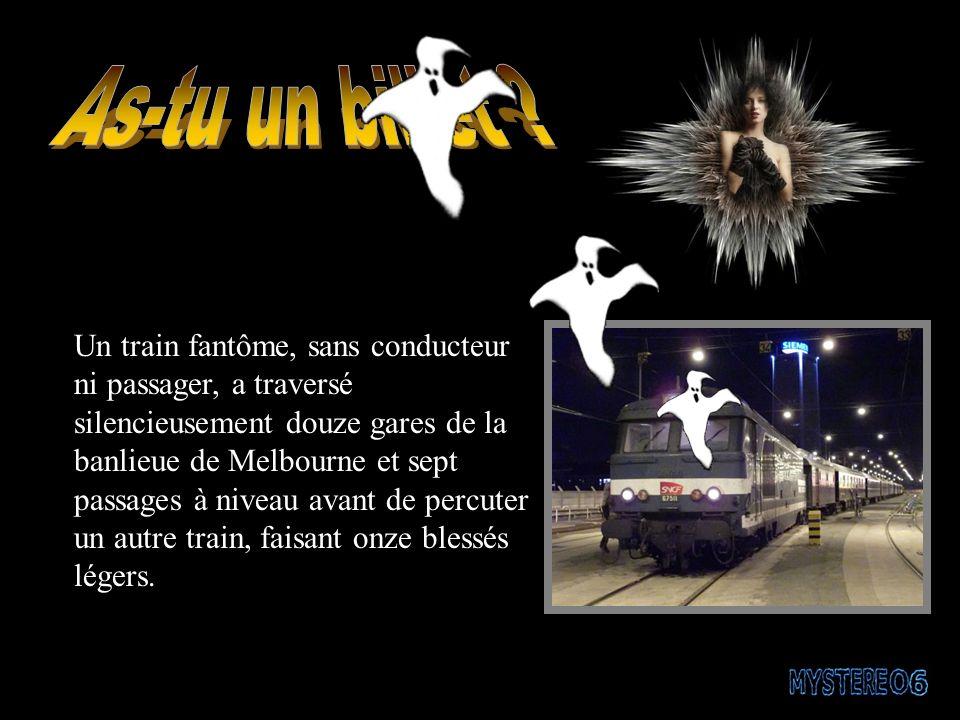 Un train fantôme, sans conducteur ni passager, a traversé silencieusement douze gares de la banlieue de Melbourne et sept passages à niveau avant de percuter un autre train, faisant onze blessés légers.