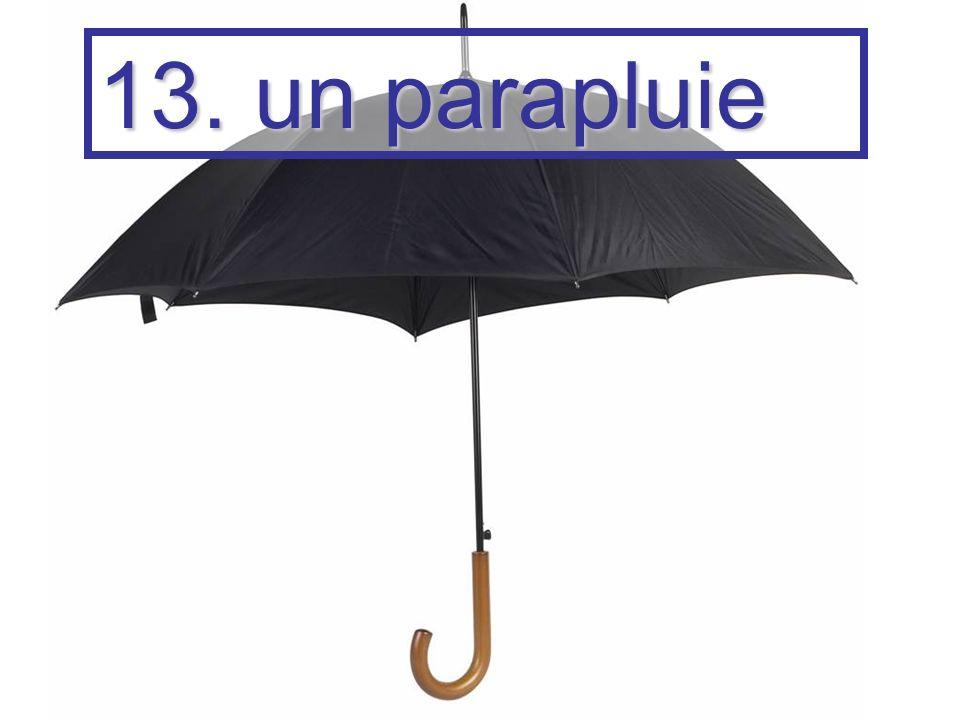 13. un parapluie
